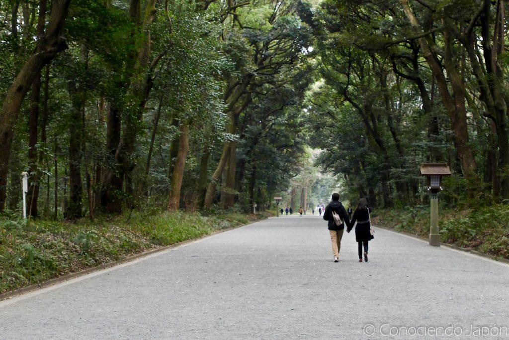 Camino por el Parque Yoyogi